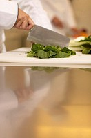 Female chef chopping pak choi on board, close-up