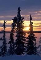 Canada, Northwest Territories, Blachford Lake, winter, sunrise