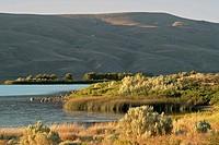 Washington state landscape of lake and mountains