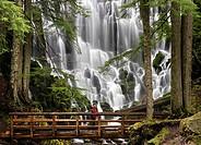 Ramona Falls Mount Hood Wilderness Oregon USA