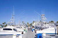 USA, Florida, Palm Beach, sport fishing boats in marian