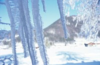 Icicles in mountains, close-up