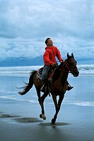 Early teen boy riding horse on beach