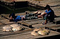Two young men on bamboo rafts, Thailand