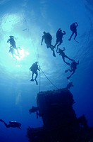 Divers at mooring line at top of USS Saratoga Bikini Atoll
