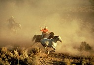 Two wranglers on horseback chasing and roping another horse in a dusty scene