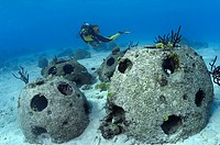 Collection of artificial reef balls. Curaçao, Netherland Antilles