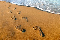 footprints along shore on beach