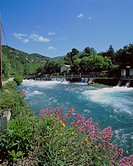 10193281, France, Europe, Provence, Fontaine de Vaucluse, river, flow, penstock, luxuriant scenery