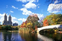 Bow bridge, The Lake, Central Park, Manhattan, New York, USA