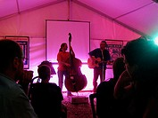 Musicians at a birthday party in a marquee