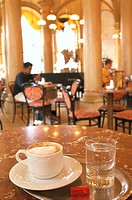 Austria, Vienna, city center, Freyung, Palace Ferstel, cafe Central, Kaffeetisch, Tumbler, Melange, guests, no mr 1. District, gastronomy, cafe, Vienn...