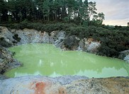 New Zealand, North island, close to Rotorua,  Waiotapu Thermal Wonderland,  Devil´s Bath New Zealand, North Iceland, sight, destination, destination, ...
