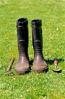 Meadow, rubber boots, work appliances, earthy, summer,  Garden, leisure time, hobby, gardening, shoes, boots, rubber shoes, work boots, dirty, insensi...