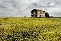 Abandoned house next to the rice fields. P.N. Albufera de Valencia, Comunidad Valenciana, Spain.