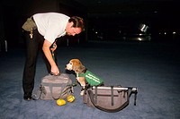 U.S. Department of Agriculture´s Beagle Brigade dog and handler searching bags for fruit and vegetables.