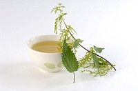 Cup, of, nettle, tea, and, leaves, Urtica, dioica, indoor