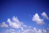 Hawaii, Blue sky dotted with puffy clouds