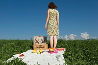 Young woman standing on picnic blanket, rear view