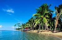 Dominican Republic, Samana province, Las Terrenas, Playa Coson