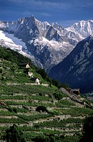 Switzerland, Valais region, Val d´Herens