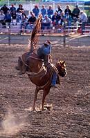 Canada, Saskatchewan, the Badlands, country rodeo at Shaunavon