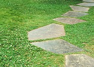 Landscaping, stepping stones
