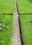 Landscaping, pathway through grassy sections