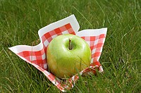 Apple and napkin on grass