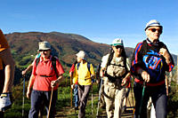 Group of seniors hiking with backpacks