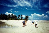 Rear view of tourists walking on a beach, Grand Bahamas