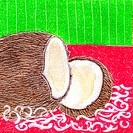 A picture of a halved fresh coconut (thumbnail)