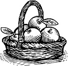 Drawing of a basket of apples drawn in black and white