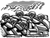 A building and an apple orchard drawn in black and white