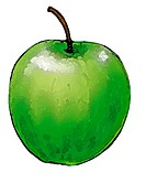An Illustration of a green shiny apple