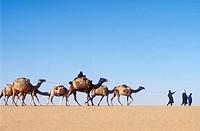 Sahara Desert, Niger.