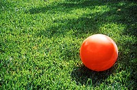 An orange kickball lays on a green grassy lawn
