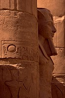 Egypt, Luxor, Temple of Luxor, hieroglyphs and statue of Rameses II