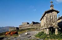 ´Espigueiros´ (typical granary) and Lindoso castle (13th century). Cabril valley. Peneda-Gerês National Park. Minho. Tras-os-Monte, Portugal
