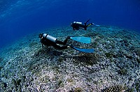 Scuba divers decompress after a deep dive in Tiputa Pass, Rangiroa, French Polynesia.