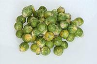 Brussels, sprouts, Brassica, oleracea, var., gemmifera