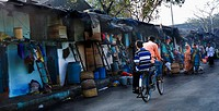 Rear view of two men cycling on the street, Mumbai, Maharashtra, India