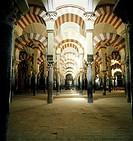 Geo , Spanien, Cordoba, Mezquita, Moschee, erbaut Ende 8  JH , Innenansicht, Säulenhalle, maurische Architektur, arabische, Säulen, Religion, Islam, R...