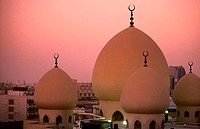 Domes of mosque, Ali Bin Abi Talib Mosque, Bur Dubai, Dubai, United Arab Emirates