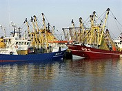 Fishing boats in the harbour of Stellendam, the Netherlands