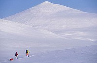 Cross-country skiers in the arctic Urals, at a latitude of 68 degrees North  Russian Federaton