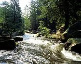 Geografie, BRD, Niedersachsen, Landschaften, Harz, Oker, Europa, Landschaft, Natur, Wald, Fluß, Bach, Wildbach, Wildwasser, Flüsse, Bäche,