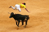 Recortador (bull-leaper), Spain
