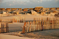 Protective fences between sand dunes at Los Lances beach, Tarifa. Cádiz province, Andalusia, Spain