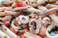 Squid-salad, close-up, fish-court, salad, seafood, sea-bulls, squid, herbs, tomatoes, food, eats appetizer, symbol, specialty, food,